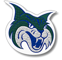 Wildcat Mascot Chenille Patch